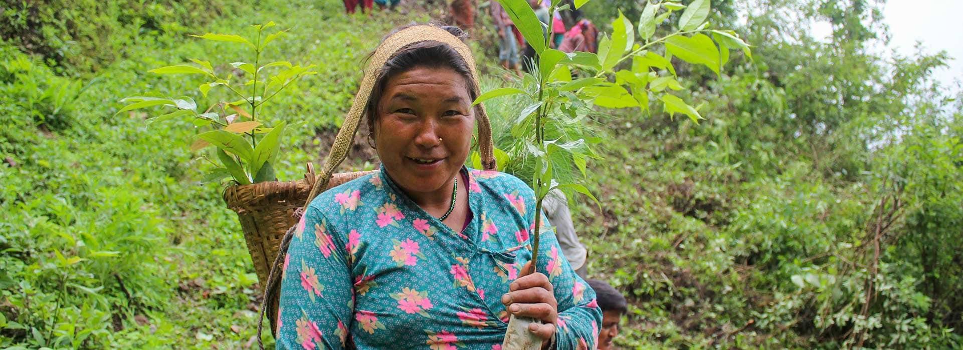 tree planting in nepal